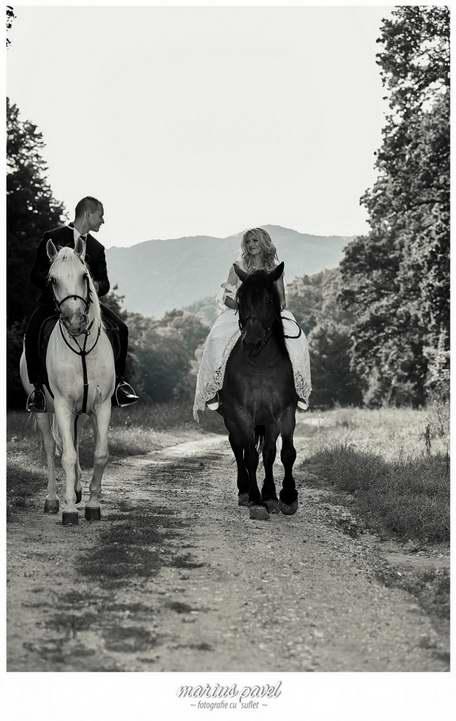 Sedinta foto nunta cu cai. fotografii dupa ziua nuntii - trash the dress cu cei doi miri si o pereche de cai langa Brasov.