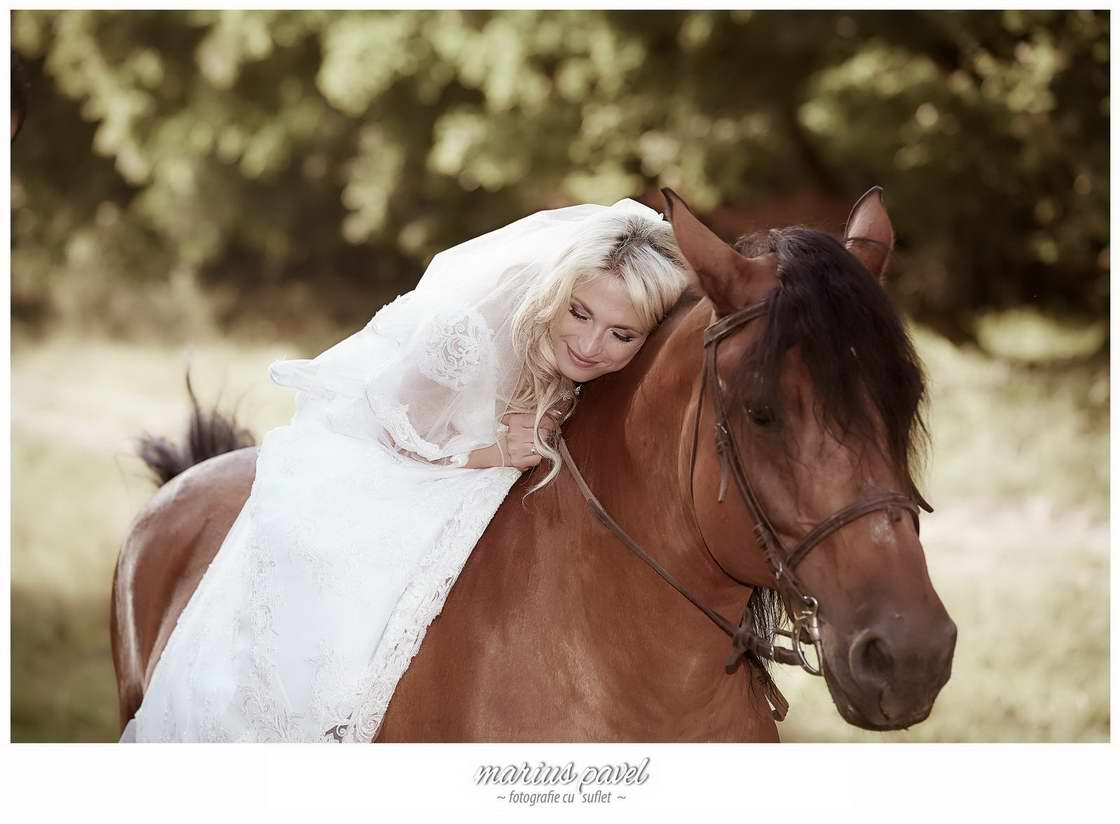 Sedinta foto nunta cu cai